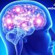 کشف بیماری که پیش از حمله به مغز ۳۰ سال پنهان می ماند